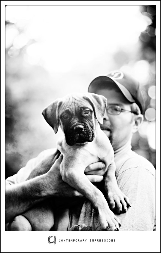 Sheboygan pet photography_3709